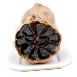 Sweet and Sour vários dente de alho negro para alimentos