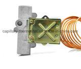 Friteuse à gaz Thermostat