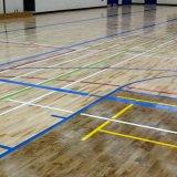 余暇の開催地のための多目的処置の床システム