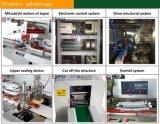 Máquina de empacotamento automática certificada PE do alimento nigeriano do tomate