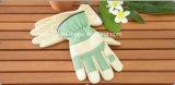 Gant fonctionnant de Gant-Sûreté de Gant-Cuir vert de jardin