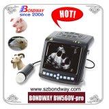 Scanner de ultra-sons de EFP, ultra-sonografia Veterianry preço de fábrica para o porco, suínos, ovinos, caprinos, gato, cão