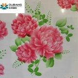 Blume strich galvanisierte PPGI Ringe von Shandong an