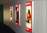 Bureaucratische formaliteiten Plakkend van de Film van het Huisdier van de Verkoop van Somitape Sh338 de Hete Hoge voor Signage