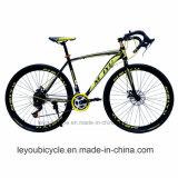 バイク(LY-A-32)を競争させる中国の工場供給カーボンスポーツ