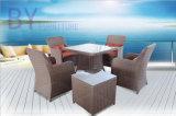 Tableau de patio de terrasse d'hôtel de villa 1 et meubles extérieurs de Cinq-Partie de 4 présidences