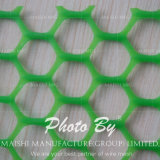 HDPE Plastic Wire Mesh