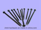 2 '' 3 '' отполировали общие ногти для конструкции от фабрики с конкурентоспособной ценой высокого качества