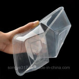 Pp. löschen doppelte Behälter-Wegwerfnahrungsmittelplastikkasten