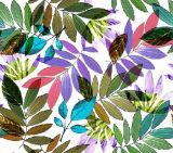 Bunte Blätter gedrucktes Nylongewebe für Badebekleidung (ASQ101)