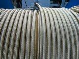 En hydraulique de boyau 1SN2SN R16r17 pour le gisement de pétrole 1/4'-2'de mine d'excavatrice