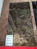 El múltiplo modela el azulejo de suelo Polished de la porcelana