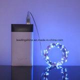 Le câblage cuivre 33FT d'USB DEL chaîne de caractères étoilée flexible de 100 DEL allume les quirlandes électriques imperméables à l'eau pour d'intérieur