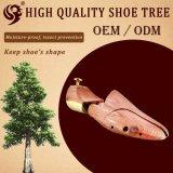 Normaler einfacher hölzerner Schuh-Baum stellen Schuhe bequem her