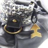 De nieuwe Toebehoren van de Manier van de Handtas van de Zak van de Schouder van Vrouwen Pu Toevallige
