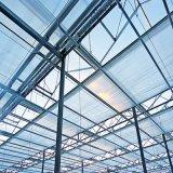 Invernadero agrícola del Multi-Palmo hidropónico