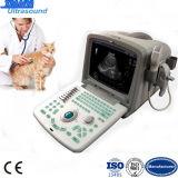 Tierarzt-Gebrauch-beweglicher Ultraschall-Scanner auf Förderung