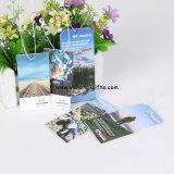安い車及びホーム(YH-AF098)のための中国の工場によって香りをつけられるカード