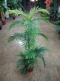 Extérieur ou à l'intérieur Plantes artificielles de palmier Gu20170216090038