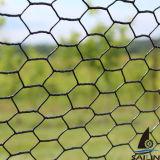 Cerca del jardín de Sailin con la tela metálica hexagonal