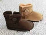 Ботинки ботинка снежка плюша новой зимы сбывания славные крытые домашние