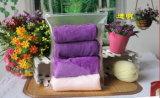 Подгонянный мешок PVC Ziplock для мешка одежды