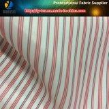 Forro Multicolor, Forro de Listra, Tecido de Poliéster, Tecido de Forro de Terno (S113.117)
