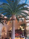 屋外の大きく装飾的なガラス繊維の人工的なナツメヤシの木