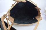 De Handtassen van Desinger van de Zak van de Schooltas van de nieuwe Vrouwen van de Handtas van de Dames van de Manier