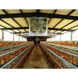 '' Anwendung 48 im Geflügel-Abgas-Ventilations-Ventilator