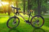 탄소 강철 21speed 스포츠 산악 자전거 (MT-033)