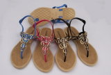 Signora Pcu Jelly PVC Sandals (24pcu16-2) dell'OEM