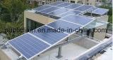Популярный 300W Солнечная панель из полимера