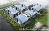 Edificio de acero estándar del chalet de la estructura de acero (V-03)