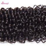 Curly profundo humano malaio perfeito do estilo de cabelo da chegada nova