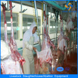 Iso Sheep Slaughtering Equipments per Slaughterhouse