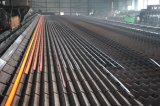 Barre plate d'acier du carbone pour la lame rotatoire de coutre