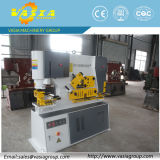 Q35y-20 Hydraulic Iron Worker Machine Manufacturer con 30 Years Manufacturing Experiences