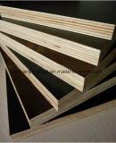 Birch/Construcción de núcleo de madera contrachapada de álamos/ Brown Film enfrenta el contrachapado para el hormigón