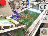 Pet/PP Einzelheizfaden-Maschinen-Zeile für Seil