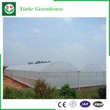 Invernadero de la película del PE del marco de acero de Qingzhou con el sistema de ventilación