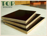 4 ' le film en bois frais de Brown de faisceau de *8'12/15/18 millimètre a fait face au contre-plaqué avec la colle de WBP pour la construction
