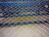 Cerca galvanizada sumergida caliente de la conexión de cadena usada como carretera estupenda de Gardon de la cerca, vía aérea (CLF-020)
