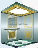 Ascenseur populaire de passager de FUJI Yida