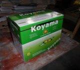 Garantie de qualité suprême sans entretien Batterie auto gratuite-12V70ah