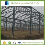 La estructura de acero industrial de Pasillo fabricó la vertiente del jardín de la fábrica del almacén
