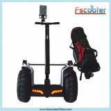 Ecorider Two Wheel Balances Electric Golf Cart Scooter with Protection Equipment