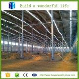 Vertente rápida do edifício da construção de aço da luz da grande extensão da construção