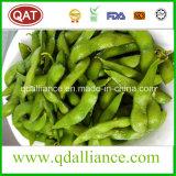 Soja congelé IQF en coque fabriqué en Chine