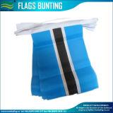 Paper Bunting, Bunting en plastique, Bunting en polyester, Bunting au Botswana (J-NF11P07046)